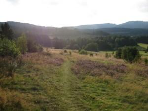 Wandern um Wolfshagen